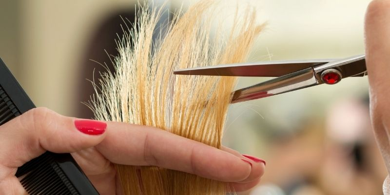 Trim the damaged ends at regular intervals - Hairstyling Tips | AVEDA Hair Salon KAPLANatelier